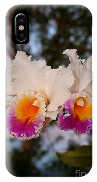 Orchid Elsie Sloan IPhone Case