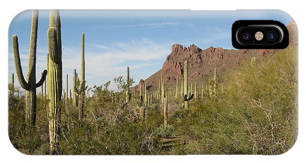 Organ Pipe Np IPhone Case