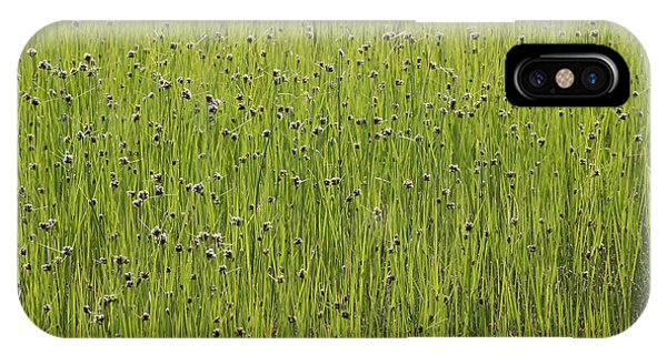 Organic Green Grass Backround IPhone Case