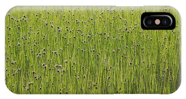 Organic Green Grass Backround IPhone Case