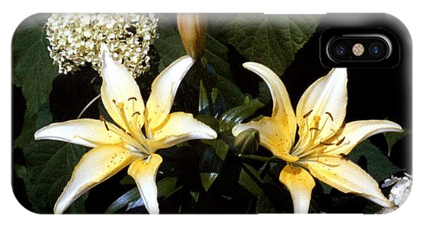Oriental Lily IPhone Case