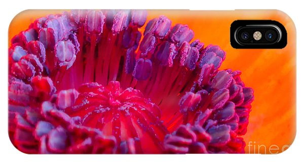 Oriental Poppy IPhone Case