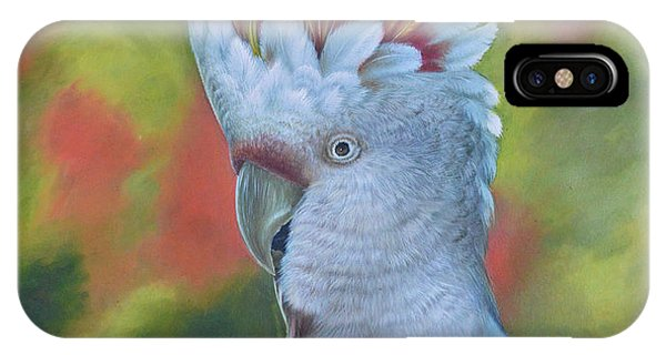 Original Animal Oil Painting Art -parrot #16-2-5-17 IPhone Case