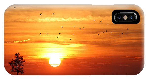 Orleans Sunset IPhone Case