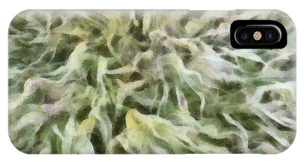 Ornamental Grasses IPhone Case
