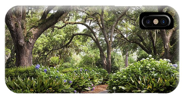 Orton Plantation Scenic Walkway Brusnwick County Nc IPhone Case