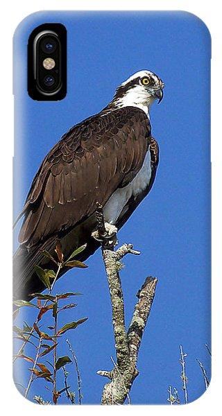 Osprey 109 IPhone Case