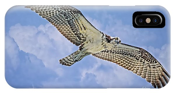 Osprey 91711 IPhone Case