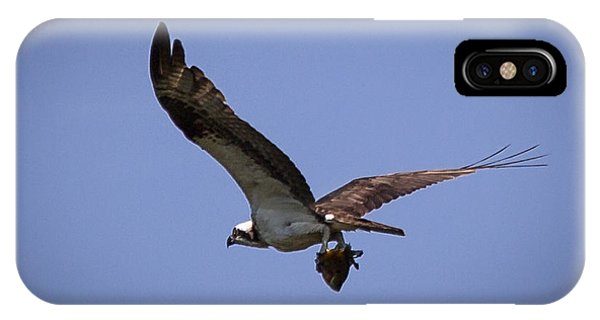 Osprey Carrying Fish  IPhone Case