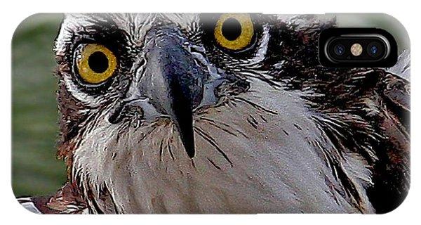 Osprey Eyes IPhone Case