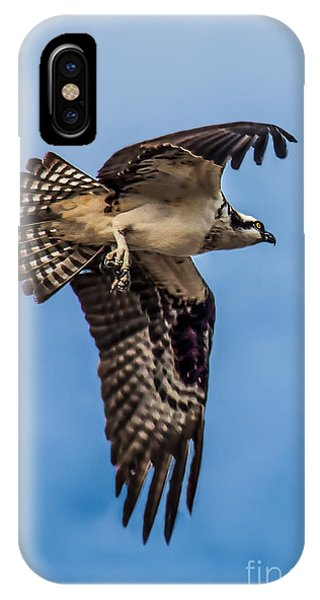 Osprey iPhone Case - Osprey Flying Away by Robert Bales