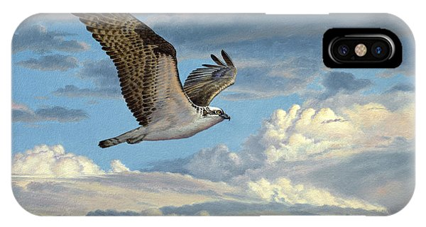 Hawk iPhone Case - Osprey In The Clouds by Paul Krapf