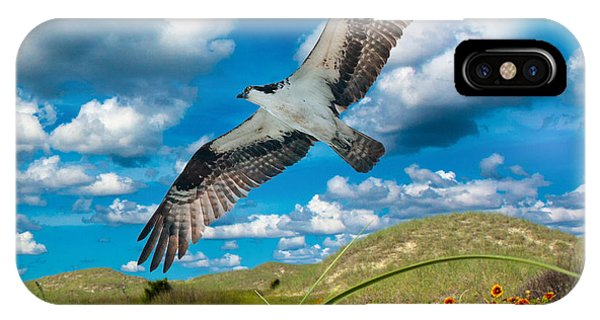 Avian iPhone Case - Osprey On Shackleford Banks by Betsy Knapp