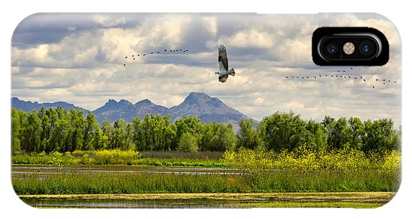 Osprey Over The Wetlands IPhone Case