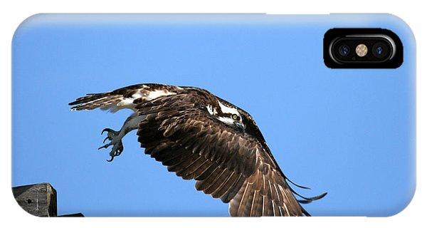 Osprey Wings Forward Phone Case by Darrin Aldridge