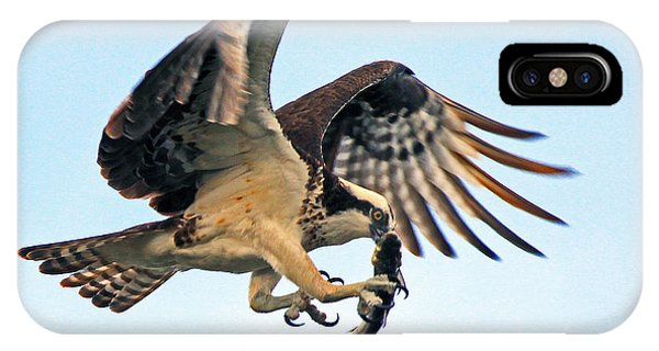 Osprey With Fish 1-6-15 IPhone Case