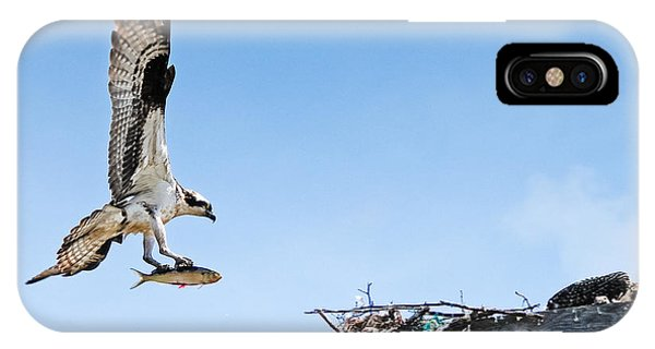 Osprey With Fish IPhone Case