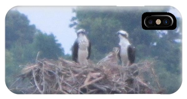 Osprey's Chatting On The Chesapeake Bay Phone Case by Debbie Nester