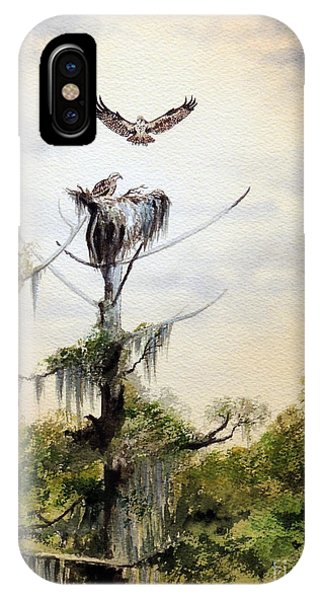 Wakulla iPhone Case - Ospreys Nesting Wakulla River by Bill Holkham