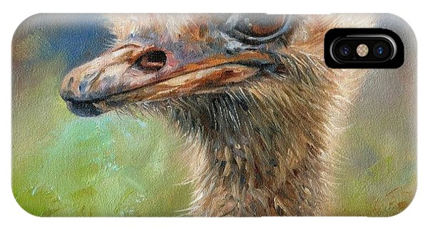 Ostrich iPhone Case - Ostrich by David Stribbling