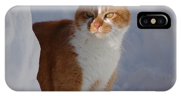 IPhone Case featuring the photograph Otis by Christiane Hellner-OBrien