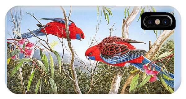 Our Beautiful Home - Crimson Rosellas IPhone Case