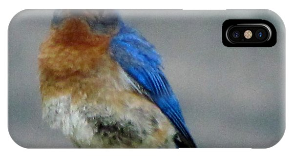 Our Own Mad Bluebird IPhone Case