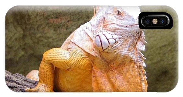 Out Of Africa Orange Lizard 1 IPhone Case