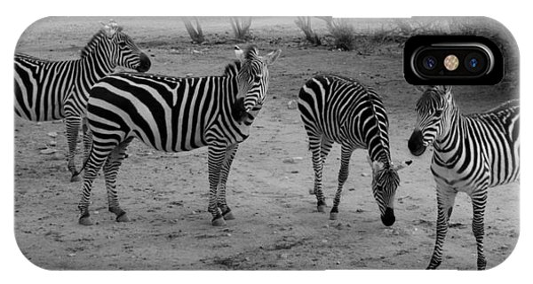 Out Of Africa  Zebras IPhone Case