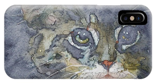 Tabby iPhone Case - Out The Blue You Came To Me by Paul Lovering