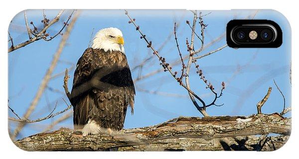 Overlooking Freedom IPhone Case