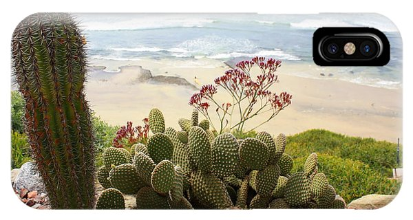 iPhone Case - Overlooking San Elijo Beach by Ann Patterson