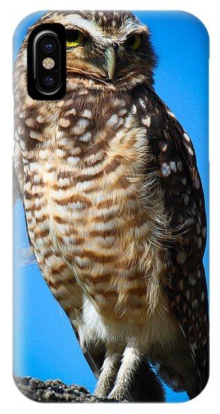 Owl 2  IPhone Case