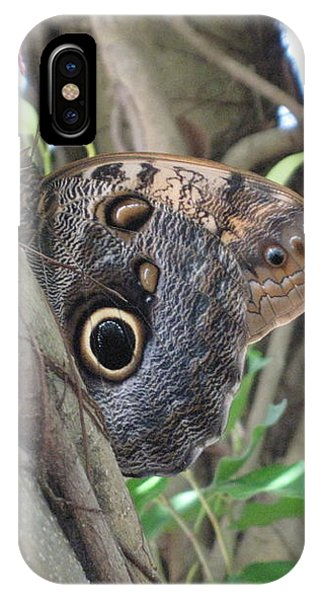 Owl Butterfly In Hiding IPhone Case