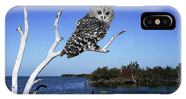 Owl In Dead Tree Phone Case by Fred Leavitt
