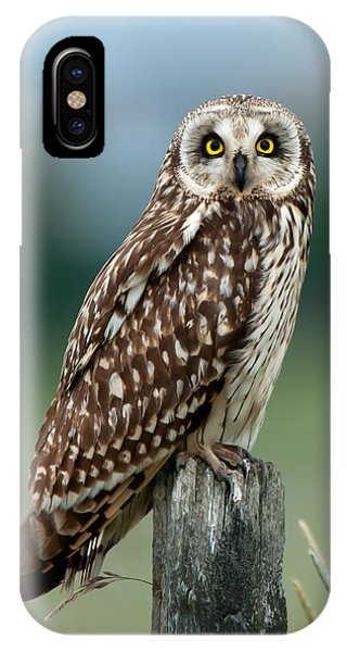 Owl See You IPhone Case