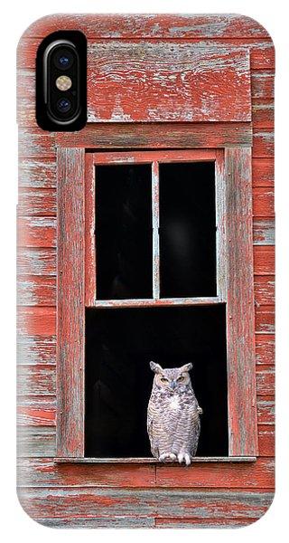Owl Window IPhone Case