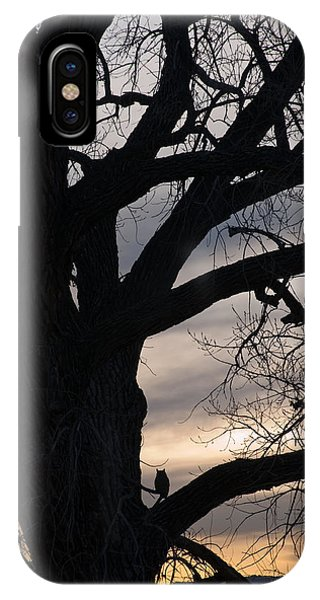 Owls Roost IPhone Case