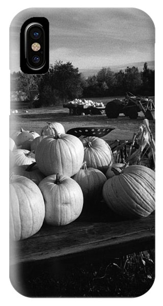 Oxford Pumpkins Bw IPhone Case