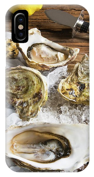 Oysters On Ice (ostrea Edulis IPhone Case
