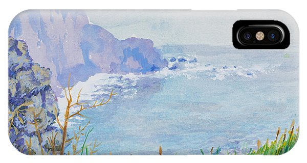 Pacific Coast IPhone Case