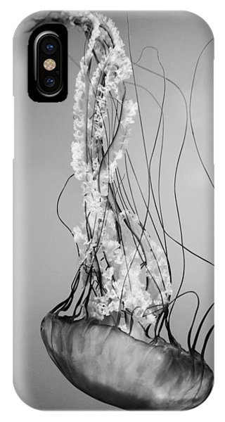 Pacific Sea Nettle - Black And White IPhone Case