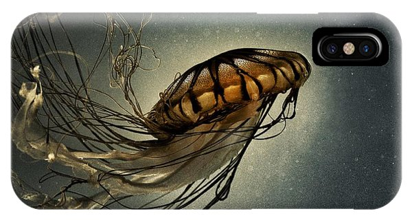 Pacific Sea Nettle IPhone Case