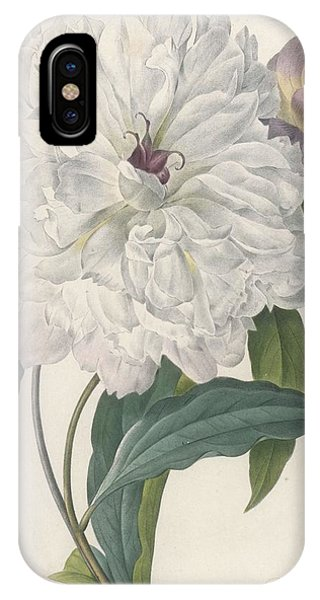 Botanical iPhone Case - Paeonia Flagrans Peony by Pierre Joseph Redoute