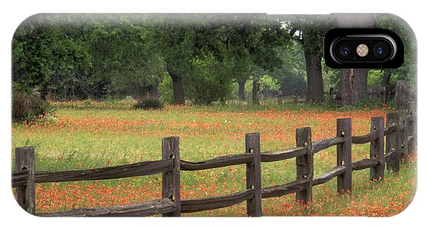 Scarlet Paintbrush iPhone Case - Paintbrush Fence - Fs000909 by Daniel Dempster