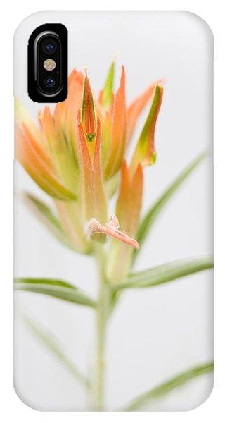 Paintbrush-high Key IPhone Case