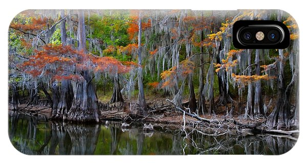 Bald Cypress iPhone Case - Painted Bayou by Lana Trussell
