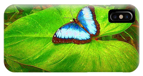 Painted Blue Morpho IPhone Case