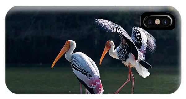Painted Storks Phone Case by K Jayaram