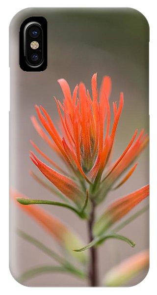 Painterly Paintbrush IPhone Case